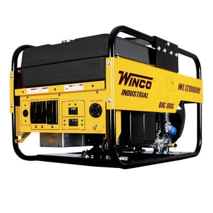 wl12000he l generac gp5500 carburetor emergency generator wiring diagram